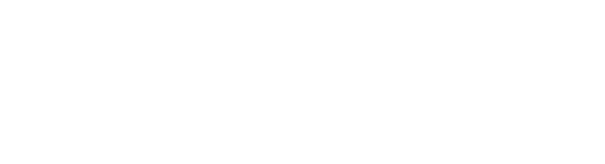 Times-Picayune Doll and Toy Fund Retina Logo